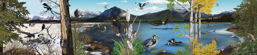 InterpretivePanel_Vermilion_Lakeshore_BirdsThroughSeasons_2012
